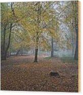 Epping 8 Wood Print by David  Hawkins