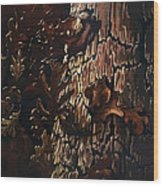 Eruption Wood Print