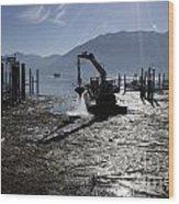 Excavator Clean A Harbor Wood Print