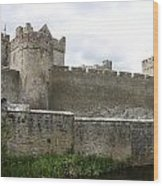 Exterior Of Cahir Castle Wood Print