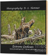 Extreme Lookouts Wood Print