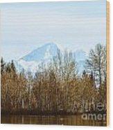 F2110922 Wood Print