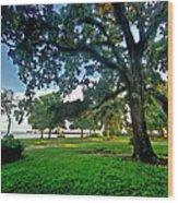 Fairhope Lower Park 4 Wood Print