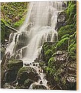 Fairy Falls In The Columbia River Gorge Area Of Oregon Wood Print