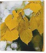 Fall Arrives Wood Print