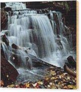Fall At Ricketts Glen Wood Print