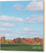 Fall Colors IIi Wood Print