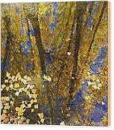 Fall Dreams Wood Print