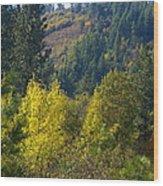 Fall In Spokane Wood Print