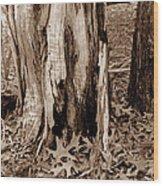 Fall Leaves V I Wood Print