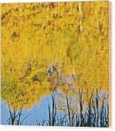 Fall Reflections Wood Print