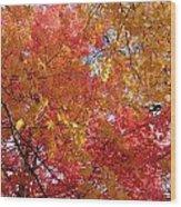 Fall Saint Louis 1 Wood Print