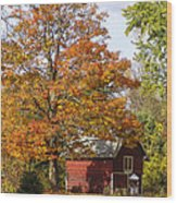 Fall View Wood Print