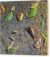 Fallen Leaves Wood Print by Carlos Caetano