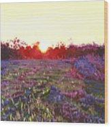 Farley Sunset Wood Print