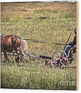 Farming With Horses Wood Print