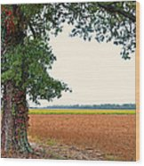 Farmland View Wood Print