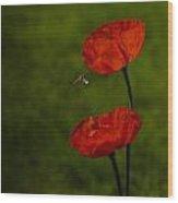 Fauna And Flora Wood Print