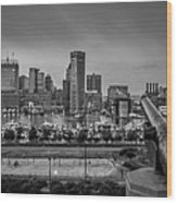 Federal Hill In Baltimore Maryland Wood Print