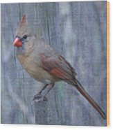 Female Cardinal Wood Print by John Kunze