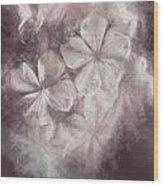 Fibonacci Flowers In Energy Manipulation Calculus Wood Print
