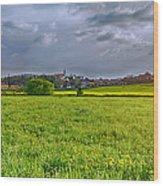 Fields Of Rapeseed In Lower Silesia Wood Print