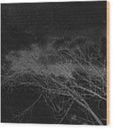 Film Noir Cinematographer Burnett Guffey Jacques Tourneur Nightfall 1957 Casa Grande Arizona 2004 Wood Print
