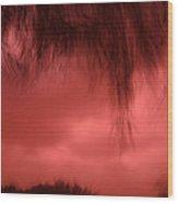 Film Noir Homage Blood Simple 1984 Hanging Tree Branches Casa Grande Arizona 2005 Wood Print