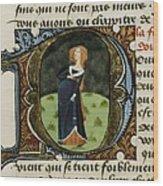 Firenze, Aldebrando Da 14th Century Wood Print