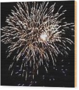 Fireworks Wood Print by Mark Malitz