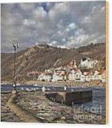 Fishing Village Of Molle In Sweden Wood Print