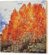 Flaming Aspens 2 Wood Print