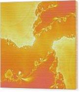 Flarium Solarium Wood Print