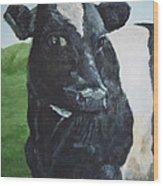 Flirtatious Cow Wood Print