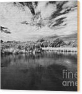Flooded Grasslands And Mangrove Forest In The Florida Everglades Usa Wood Print