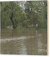 Flooded Park Wood Print
