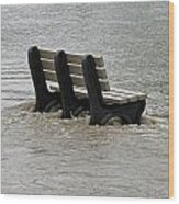 Flooded Seat  Wood Print