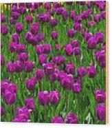 Floral Art Vi Wood Print