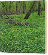 Floral Forest Floor Wood Print