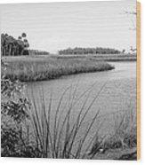 Florida Au Natural Bw Wood Print