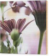 Flower Background Wood Print