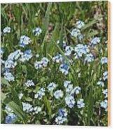 Flowers In Switzerland Wood Print