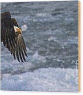 Flying Over Ice Wood Print