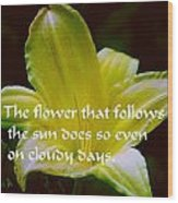 Follow The Sun Wood Print