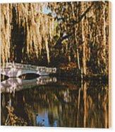 Footbridge Over Swamp, Magnolia Wood Print