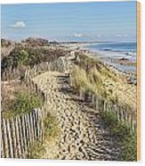 Footpath On The Atlantic Dune In Brittany Wood Print