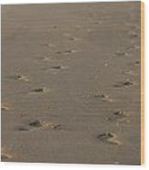Footprints In The Sand Wood Print