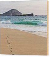 Footprints To The Ocean Wood Print