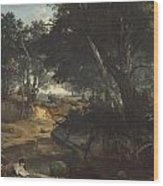 Forest Of Fontainebleau Wood Print