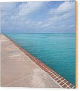 Fort Jefferson At Dry Tortugas National Park Wood Print by Jetson Nguyen